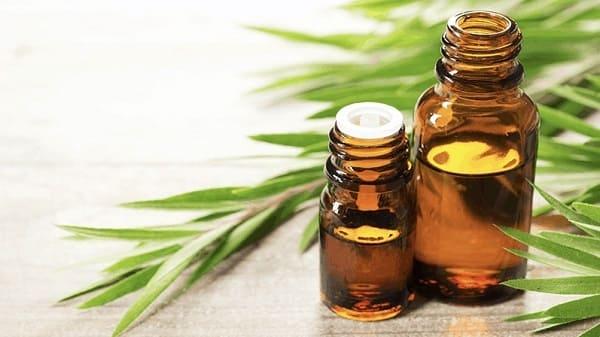 chữa bệnh hôi miệng bằng dầu tràm
