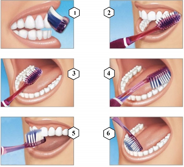 cách đánh răng hiệu quả