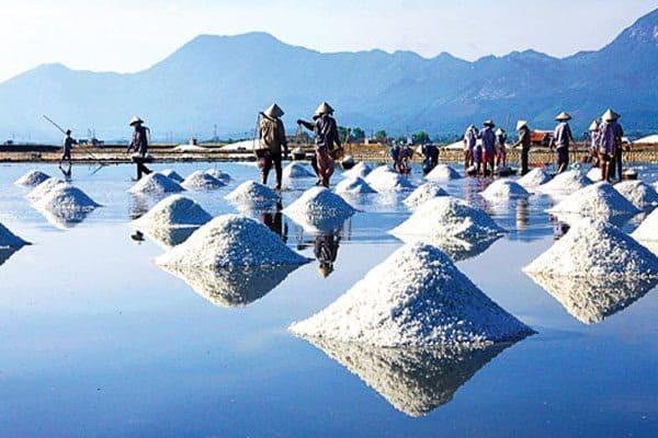 Các loại muối khoáng