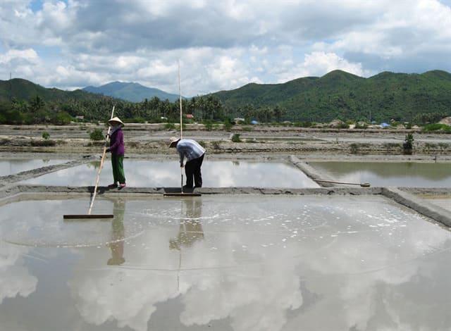 Các quy trình sản xuất muối biển