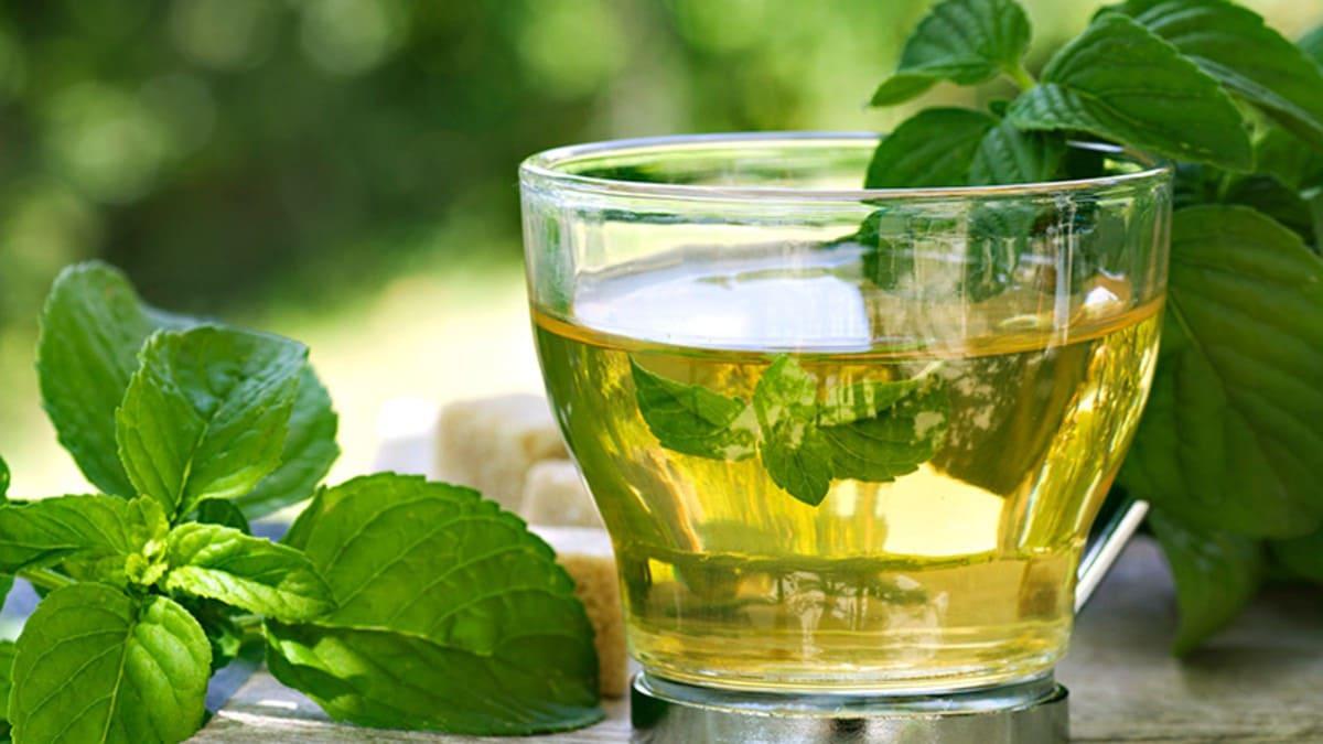 điều trị viêm họng bằng trà bạc hà