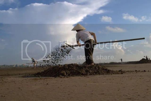 Phơi muối - Cách làm muối biển