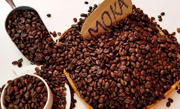 cafe loại nào ngon nhất